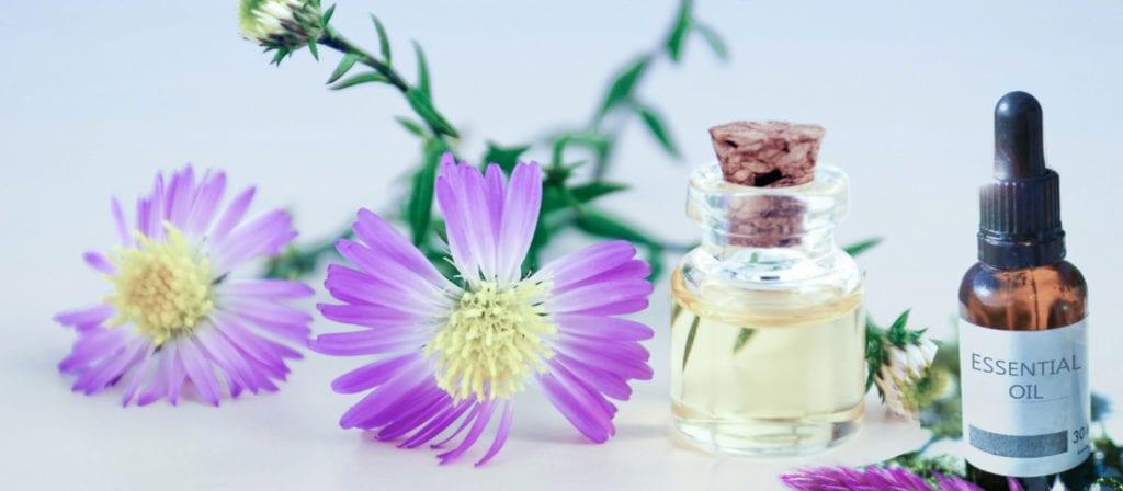 Lavender Essential Oils for Poison Ivy