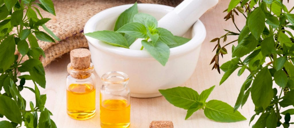 Peppermint Essential Oils for Poison Ivy